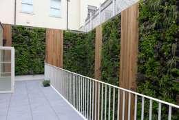 green zone design ltd: modern tarz Bahçe