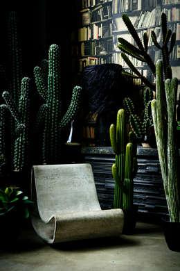 Paysagisme d'intérieur de style  par Abigail Ahern