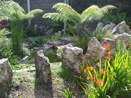 Сады в . Автор – Charlesworth Design