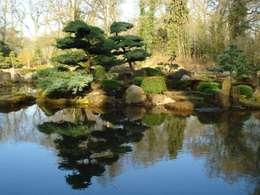Projekty,  Ogród zaprojektowane przez japan-garten-kultur