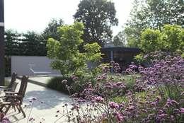 Leeftuin voor het hele gezin: moderne Tuin door Stoop Tuinen
