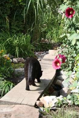 Gartenpfade: tropischer Garten von Gartenarchitekturbüro Timm