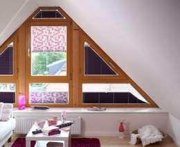 Windows & doors  by Rollomeister