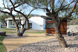 Jardin de style de style Moderne par VG+VM Arquitectos