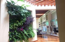Paisajismo de interiores de estilo  por ENVERDE