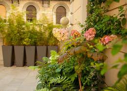 Un terrazzo vivo tutto l\'anno, con le piante sempreverdi
