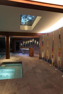 modern Pool by Alex Zdankowicz Ceramics