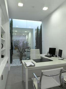Tienda EL PICAPORTE: Paisajismo de interiores de estilo  de Hernández Arquitectos