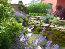 Swimming pond by Gärten für Auge und Seele