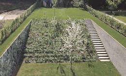 BBS094 I BRUXELLES, BE I JARDIN INCLINÉ: Jardin de style de style Minimaliste par Bureau Bas Smets