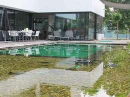 Projekty,  Ogród zaprojektowane przez Nagelschmitz Garten- und Landschaftsgestaltung GmbH