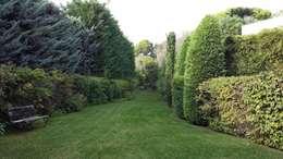 Jardin Cannes : Jardin de style de style Méditerranéen par Nazarian Espaces Verts