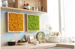 Butik Bahçe Dikey Bahçe ve Peyzaj Tasarımları  – Doğal Yosun Tablolar:  tarz Ev İçi