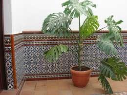 Giardino in stile in stile Mediterraneo di Hispalcerámica