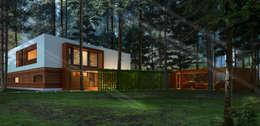 minimalistic Houses by  Aleksandr Zhydkov Architect