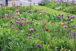 Garten neu gestalten tolle ideen und einfache tipps - Garten neu gestalten tipps ...