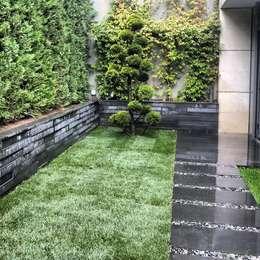 abelia peyzaj – çubukluvadi: modern tarz Bahçe
