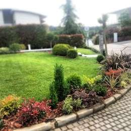 abelia peyzaj – etiler: modern tarz Bahçe