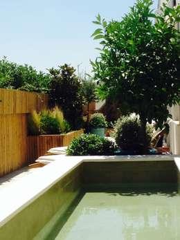 Jardines de estilo mediterraneo por a.s.paisajimo