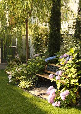 Сады в . Автор – Ravanelli Giardini