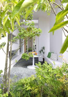 南西の庭: 久保田正一建築研究所が手掛けた庭です。