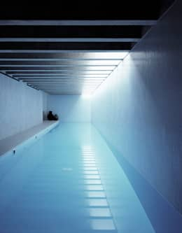 minimalistic Pool by Keith Williams Architects