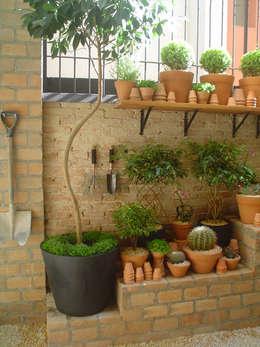 Jardines de estilo moderno por Línea Paisagismo.Claudia Muñoz