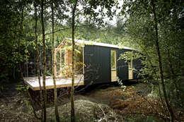 ДубльДом в лесу: Дома в . Автор – BIO - architectural Bureau of Ivan Ovchinnikov