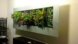 Cadre végétal intérieur VERTICAL FLORE: Paysagisme d'intérieur de style  par Vertical Flore