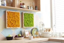 İskandinav Ormanlarından Canlı Tablolar – Mutfak Dekorasyon :  tarz İç Dekorasyon