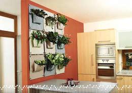 Butik Bahçe Dikey Bahçe ve Peyzaj Tasarımları  – İç Mekan Dikey Bahçeler: iskandinav tarz tarz Duvar & Zemin