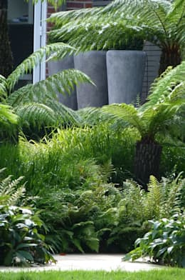 tropical Garden by Garden Arts