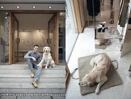 7 советов, которые помогут создать уютный дом для вашей собаки