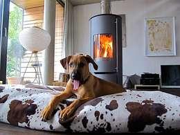minimalistic Living room by Architekturbüro 011