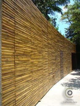 Murs de style  par BAMBU CARBONO ZERO