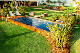 Jardim das Cores: Piscinas modernas por Adines Ferreira Paisagismo
