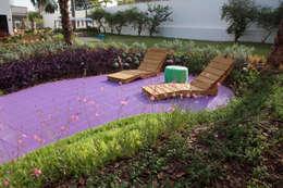 Jardines de estilo moderno por Adines Ferreira Paisagismo