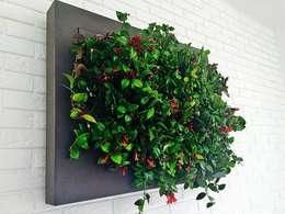 Озеленение  в . Автор – FLORABO2