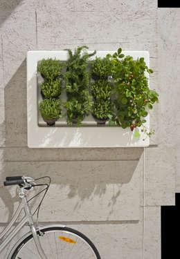 Florama duza biała z czujnikiem + rower: styl , w kategorii Zieleń wewnątrz zaprojektowany przez FLORABO2