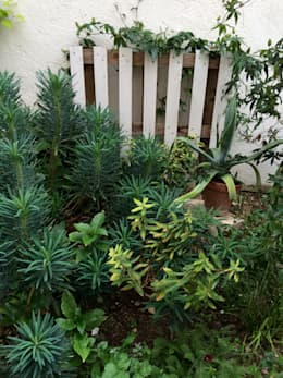 moderner Garten von Atelier d'Ersu & Blanco