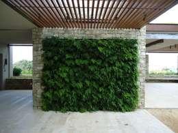 Jardines de invierno de estilo rústico por Quadro Vivo Urban Garden Roof & Vertical