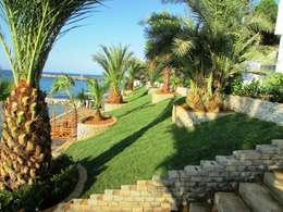 Peyzaj Mimarlık – Otel Bahçesi  Peyzaj Uygulaması: akdeniz tarzı tarz Bahçe