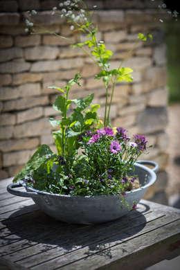 Jardines de estilo rústico por Garden Trading