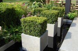 Taman by Robert Hughes Garden Design