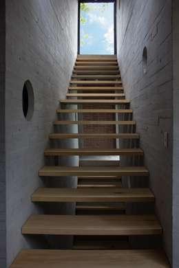 escaleras hacia roof garden: Pasillos y recibidores de estilo  por ludens