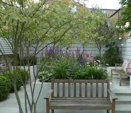 Jardin de style de style Moderne par Ruth Willmott