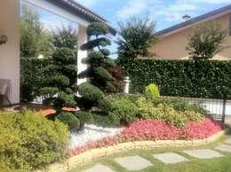 Jardins asiáticos por Azienda agricola Vivai Romeo