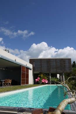 CLEMENTINE house - outside view: Maisons de style de style Tropical par STUDY CASE sas d'Architecture