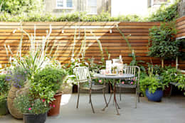 Jardines de estilo moderno por Cue & Co of London