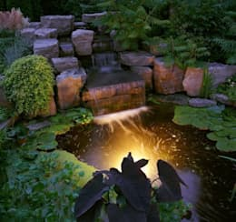 5 idee per un piccolo giardino for Laghetto balneabile progetto